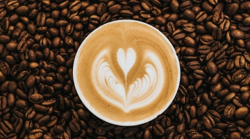 8 Factors That Influence The Quality of Coffee